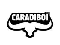 logo  Caradiboi